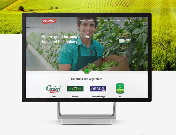 Food exporter website